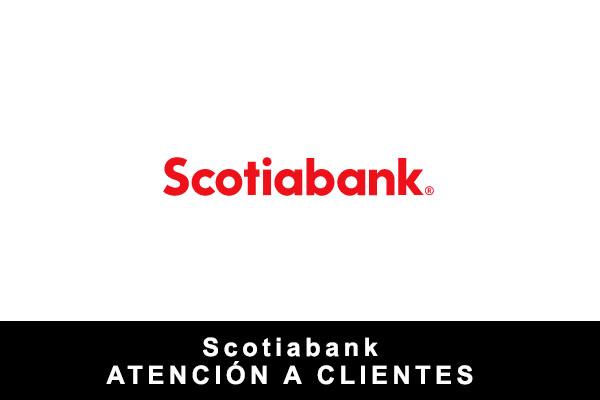teléfono de Scotiabank
